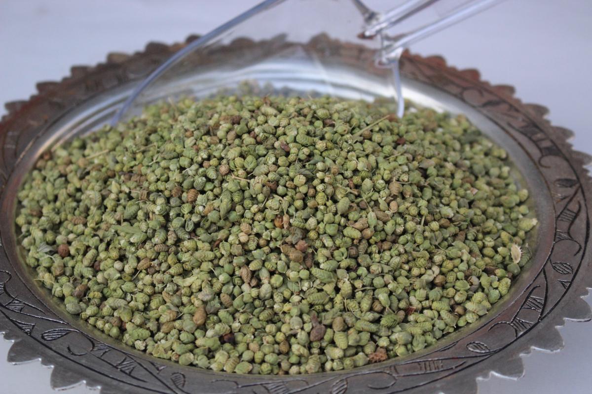 Bilya Kekik (250 gr)